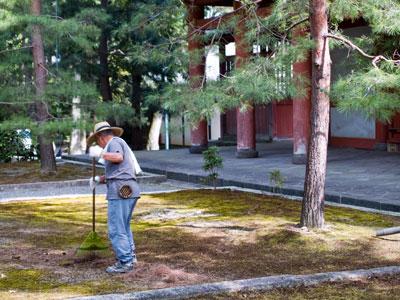 Temple Gardener :)