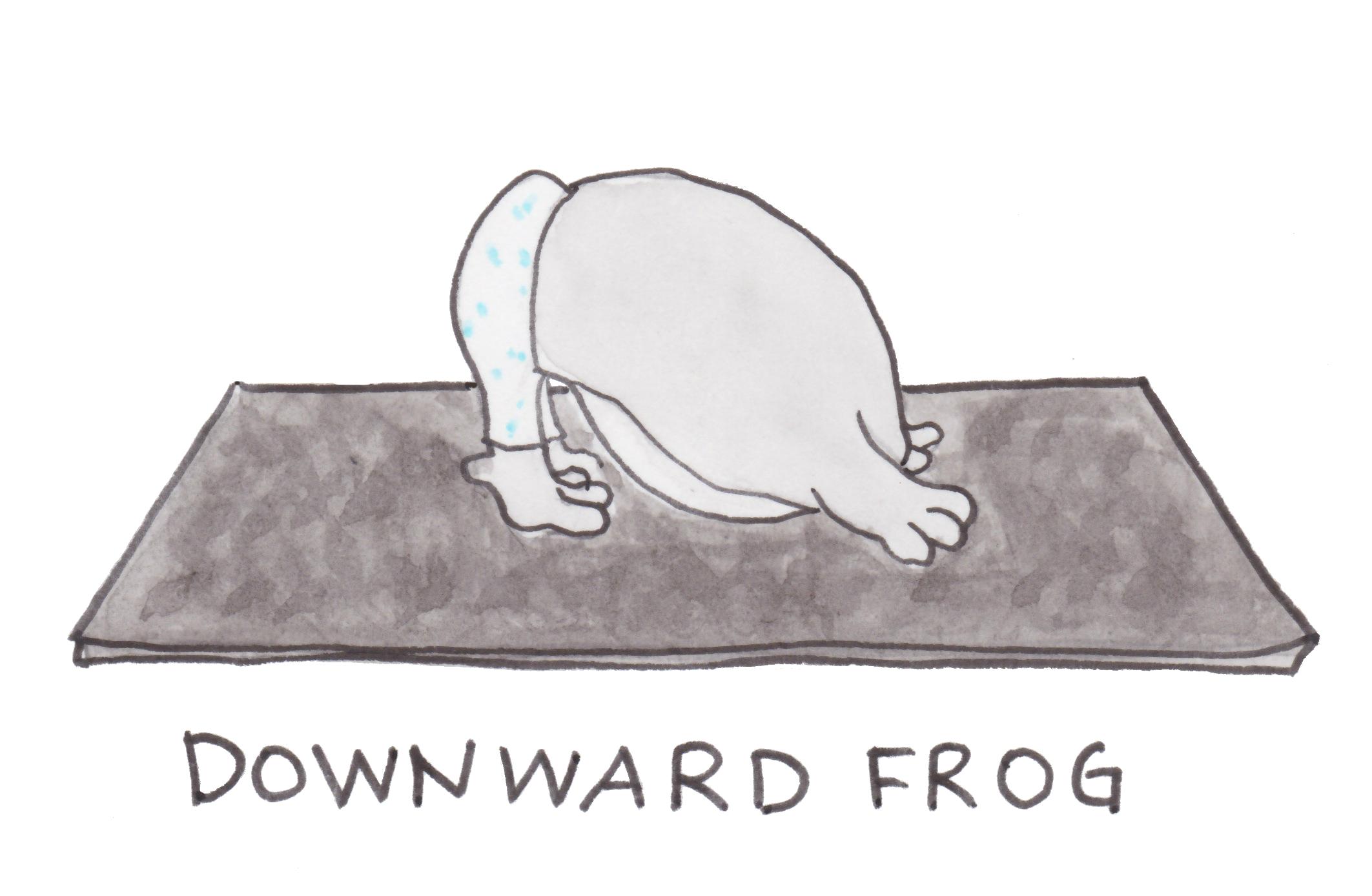 2-Downward Frog 2.jpg