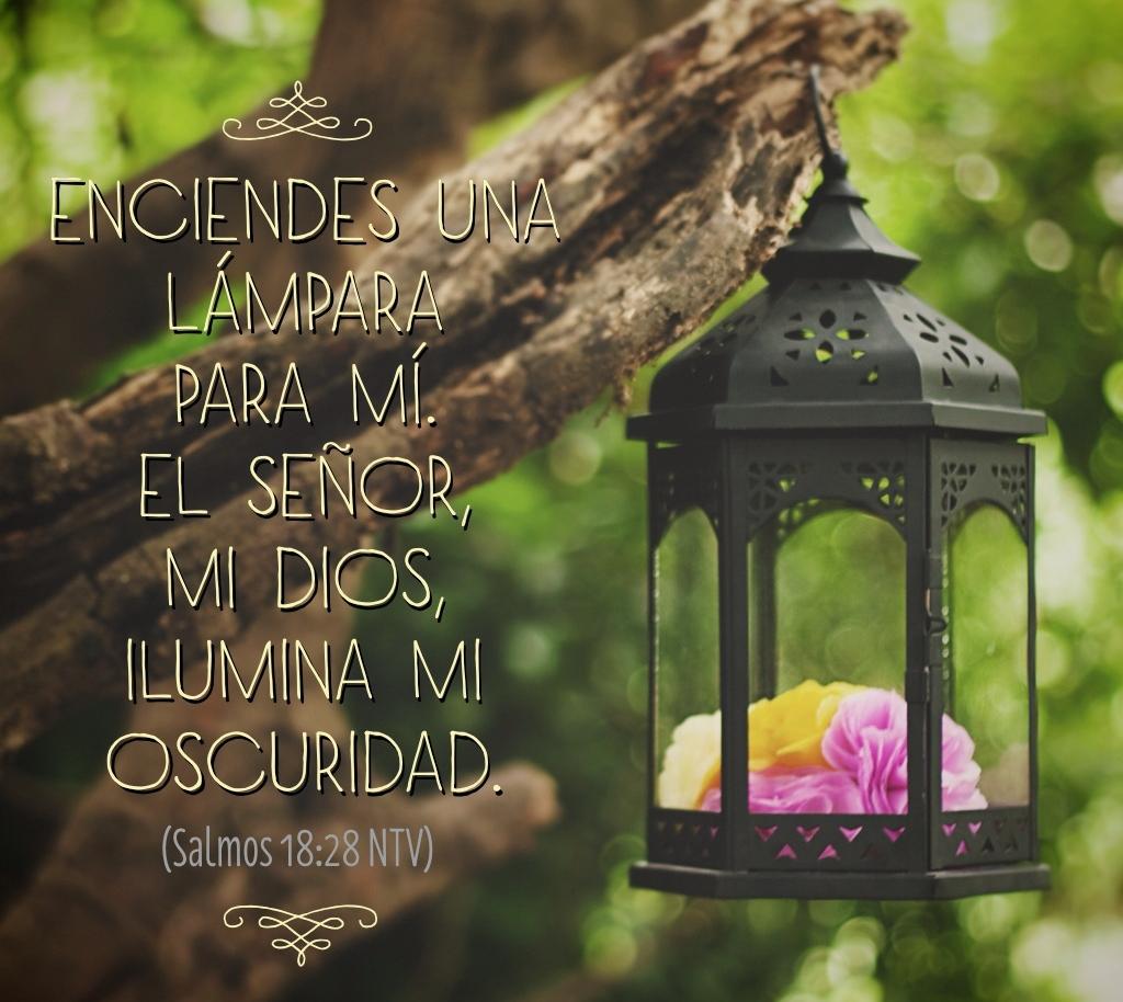 Lámpara es a mis pies su palabra, y lumbrera a mi camino.