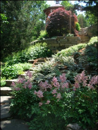 retaining walls & steps