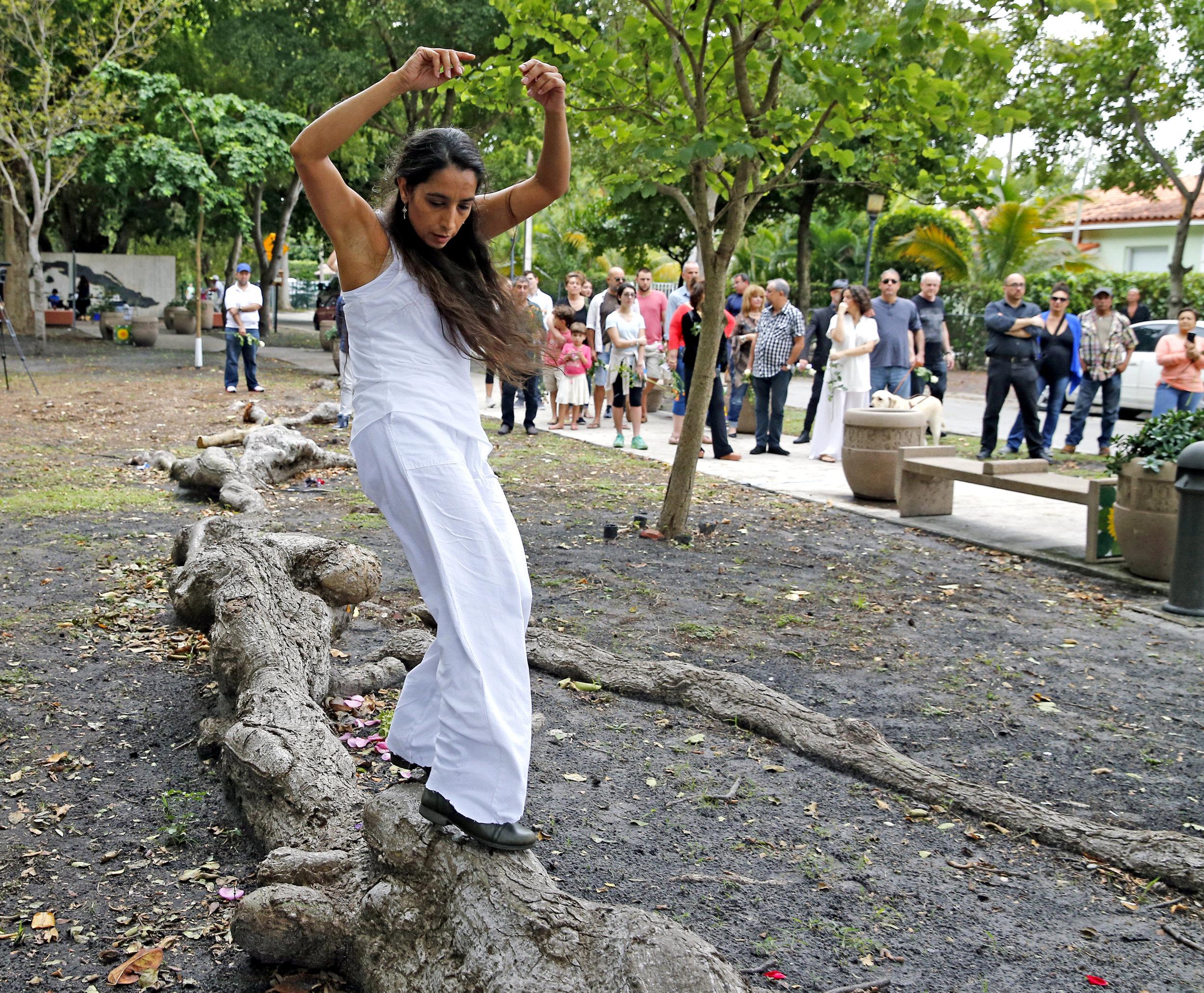 KNIGHT TREE 3.jpg