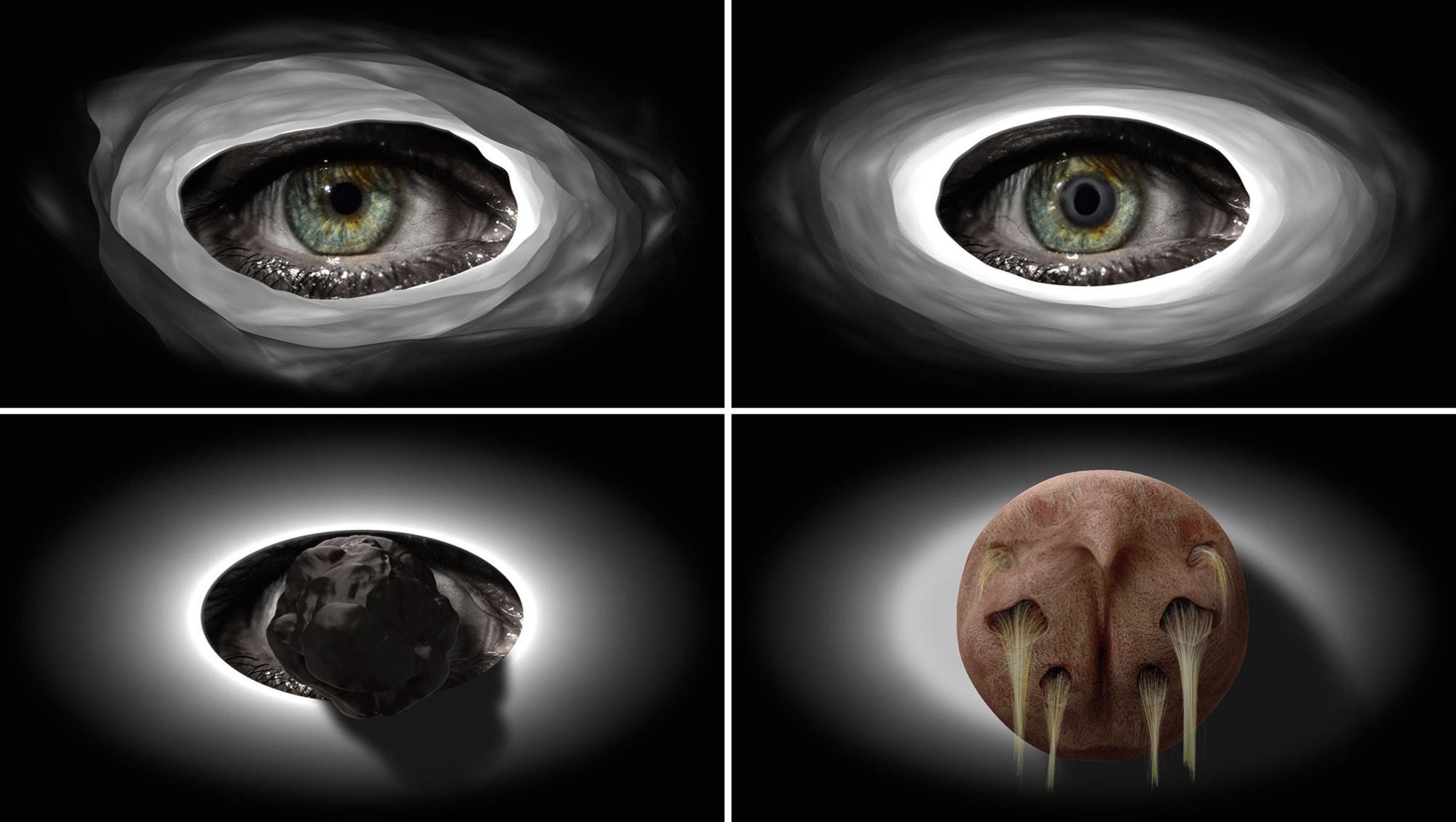 """""""El fuego de la visión"""" (9), 2015. Video monocanal, sonido. 1' 50""""."""