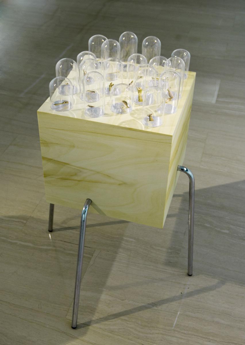 Thousand hand  . Impresión fotográfica sobre papel y alfileres cristal, madera, hierro. 70 x 35 x 40 cm. 2013