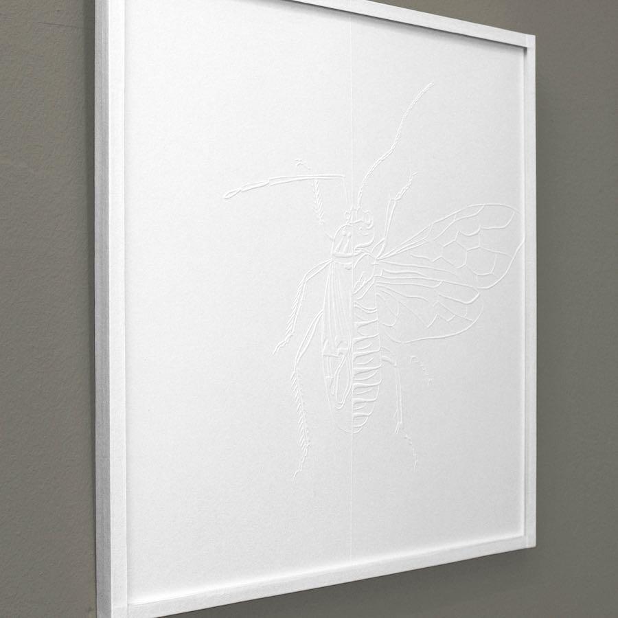 """""""La delgada línea"""", 2017. Gofrado sobre papel. 25x25 cm."""