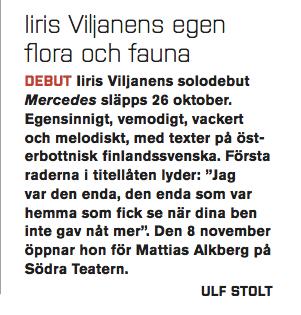 Iiris Viljanen - tips i Situation Sthlm .jpg