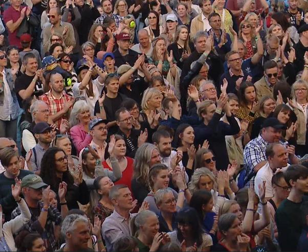 Publik på festival, bild från Svensk Live