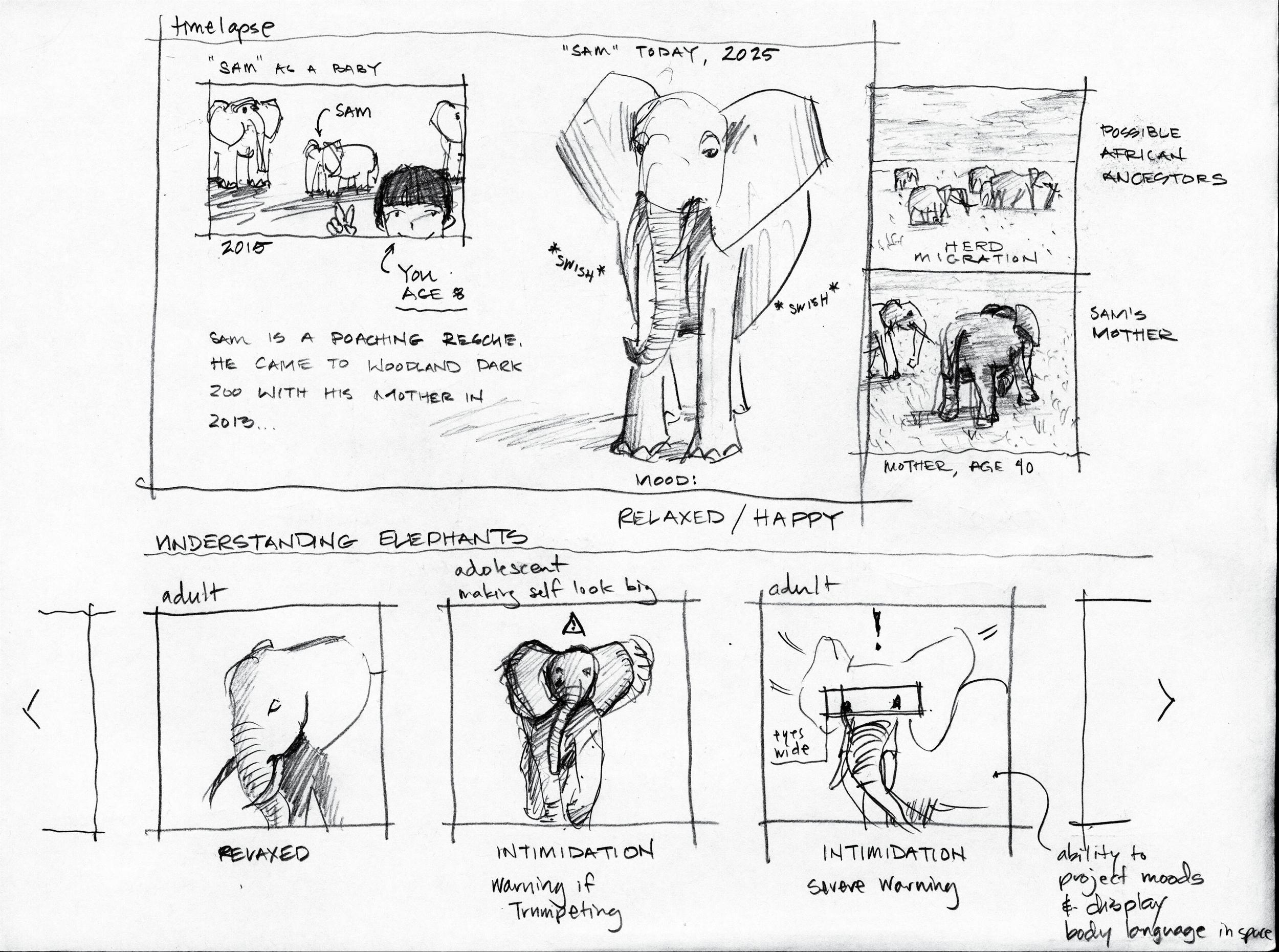 ElephantStory.png