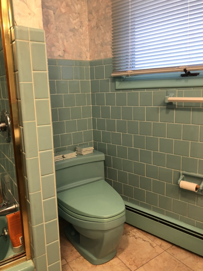 Cutting-edge 1966 American Standard baby blue toilet. Not a low-flow plumbing fixture, as evidenced by our water bill.