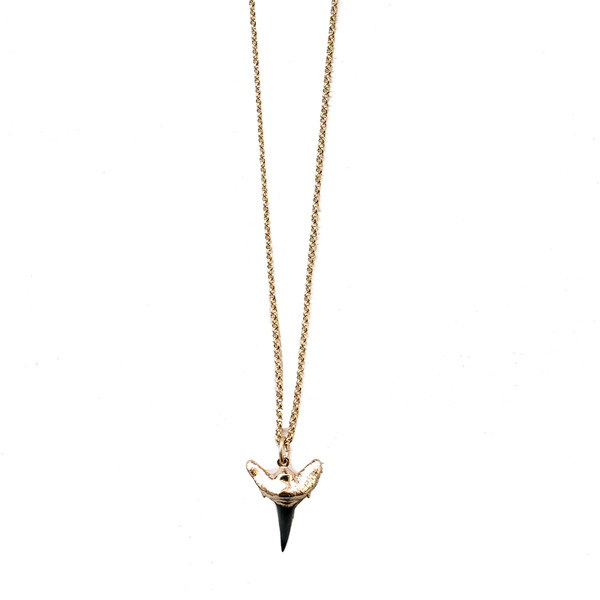 small-shark-tooth-necklace---black-1.jpg