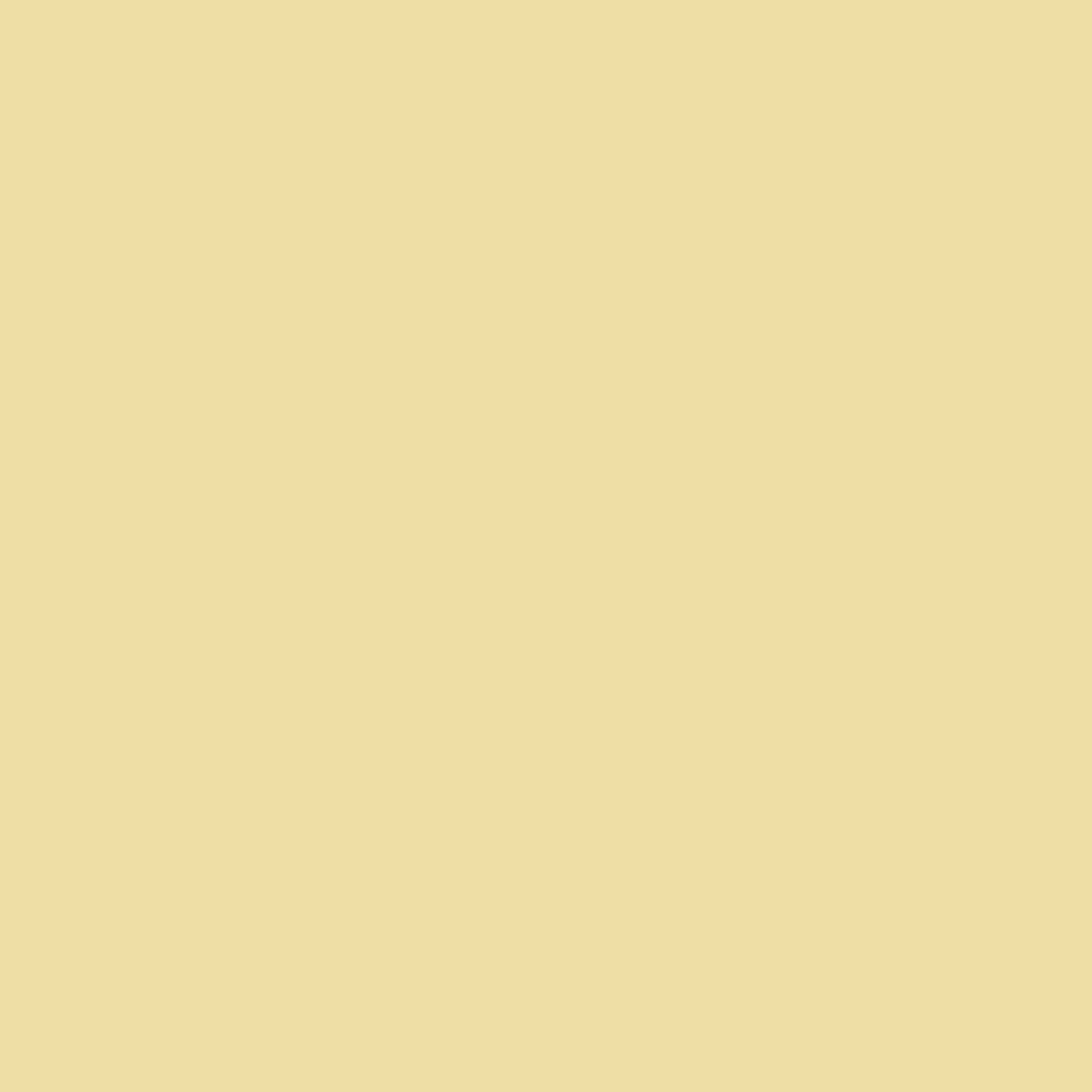 Soft Yellow   HEX: #EDDCA5   RGB: 237, 220, 165   CMYK: 7, 10, 40, 0
