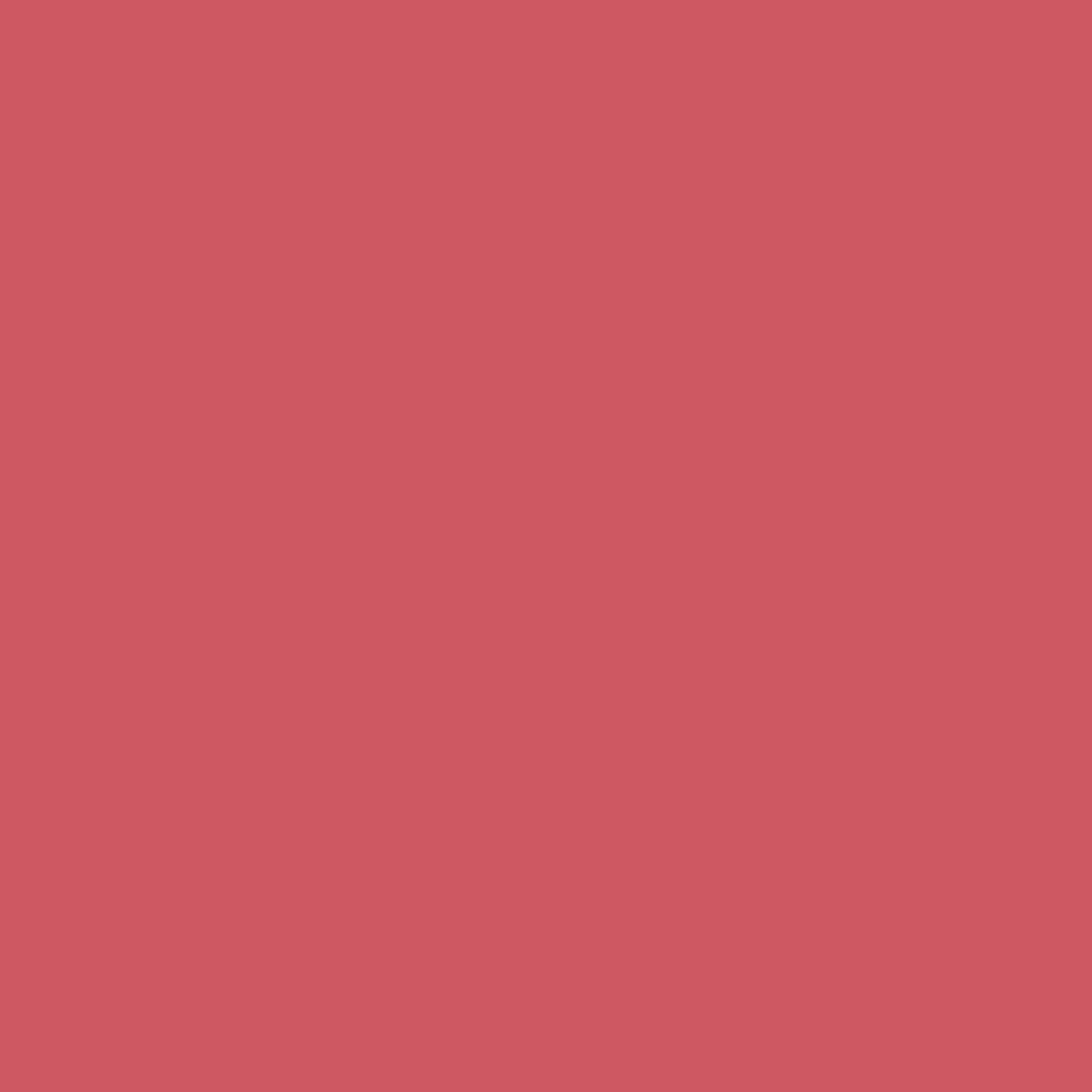 Dark Red   HEX: #CC5760   RGB: 2014, 87, 96   CMYK: 16, 80, 55, 2