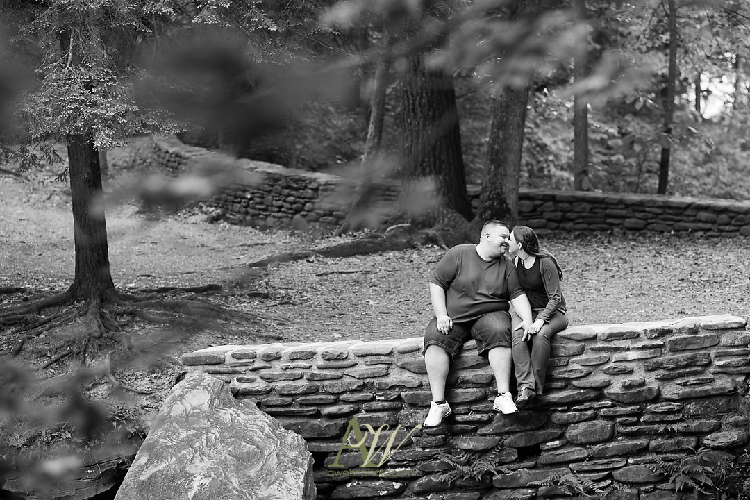 jenn-ryan-letchworth-park-engagement-07.jpg
