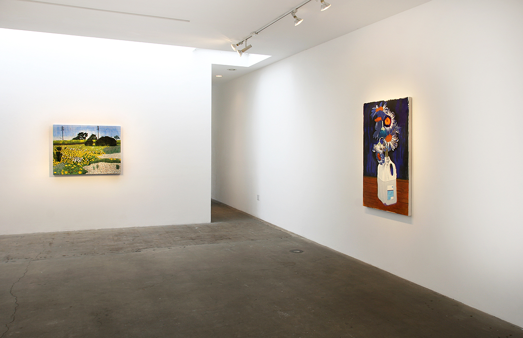 Cole Case 2012 Exhibition at Western Project