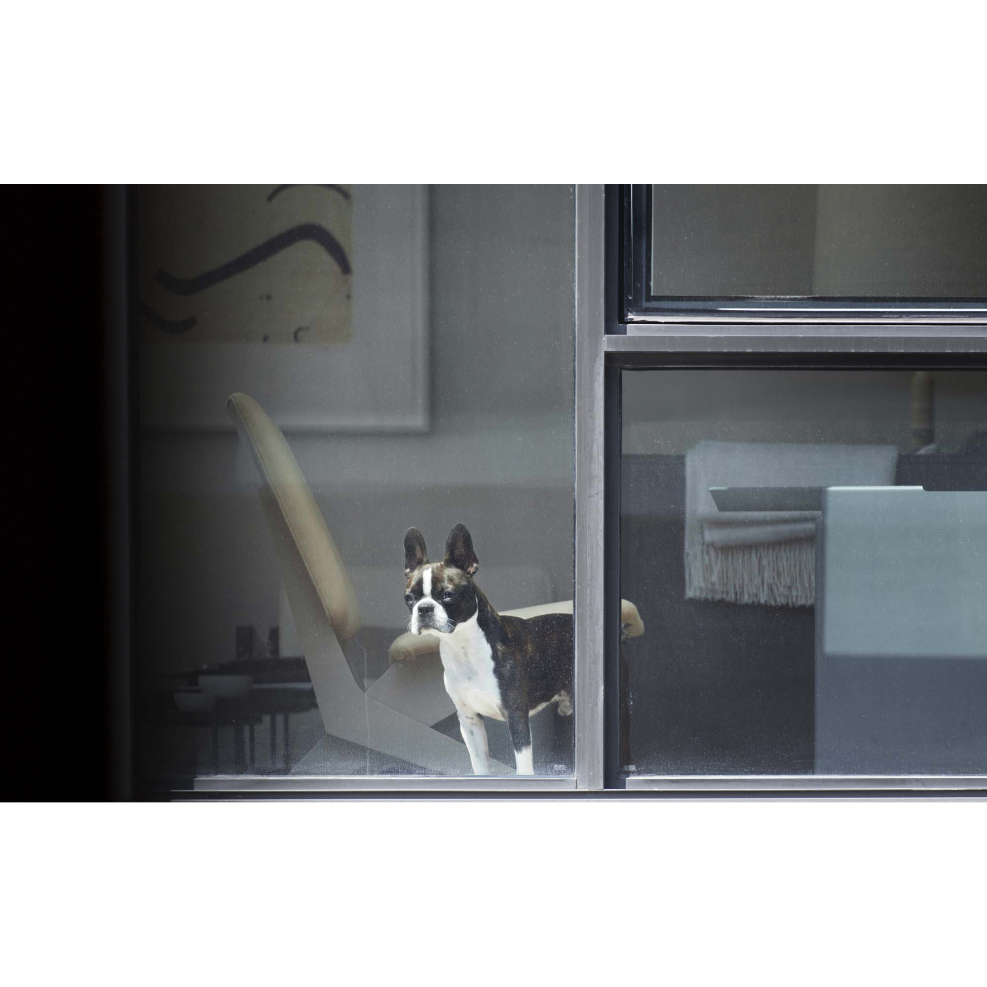 Arne Svenson, The Neighbors #15, 2012, pigment print, 30 x 48 inches