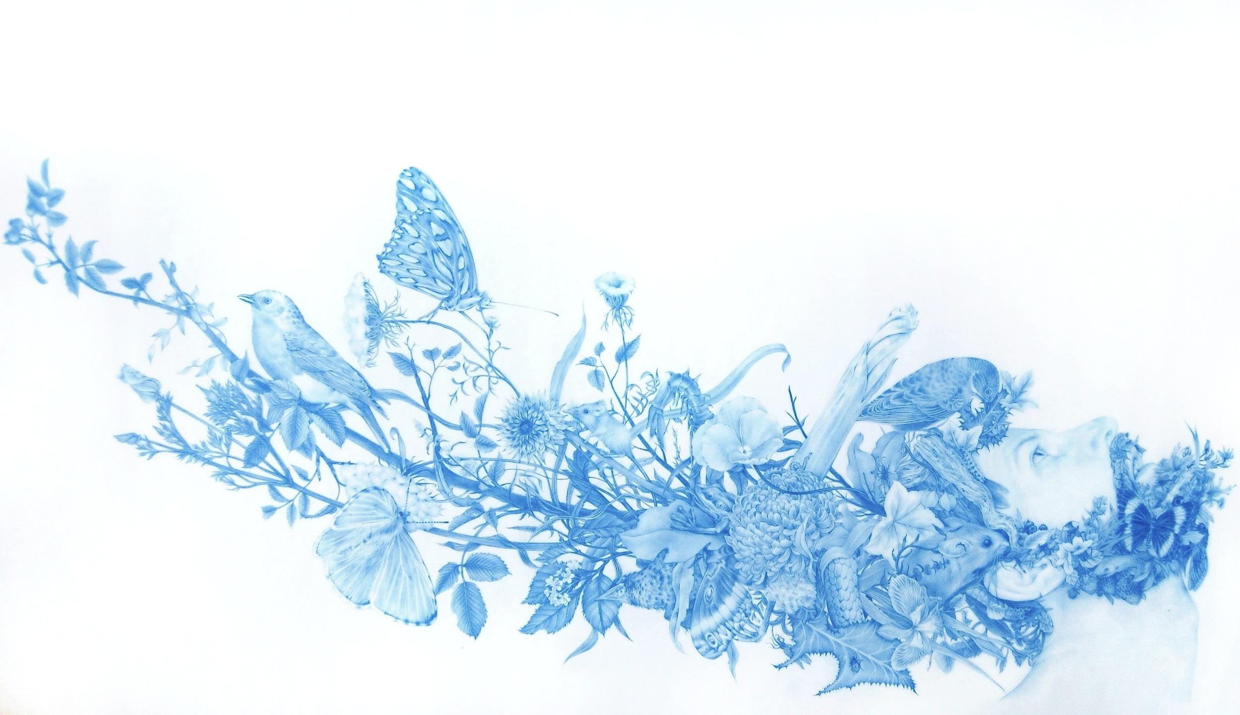 ZACHARI LOGAN, Wild Man 4, 2015, blue pencil on mylar, 21 x 35 inches