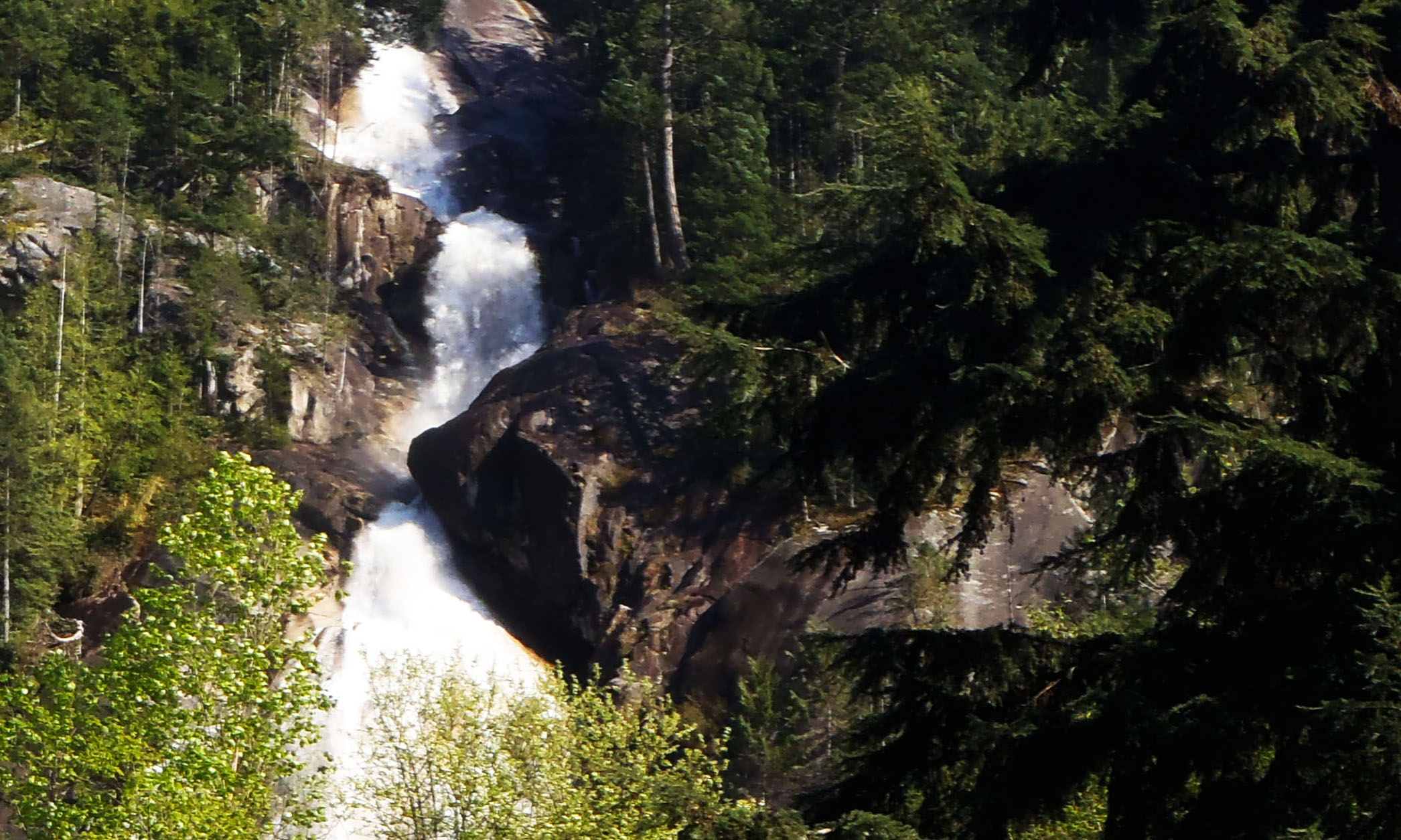Shannon falls during a Squamish tour.