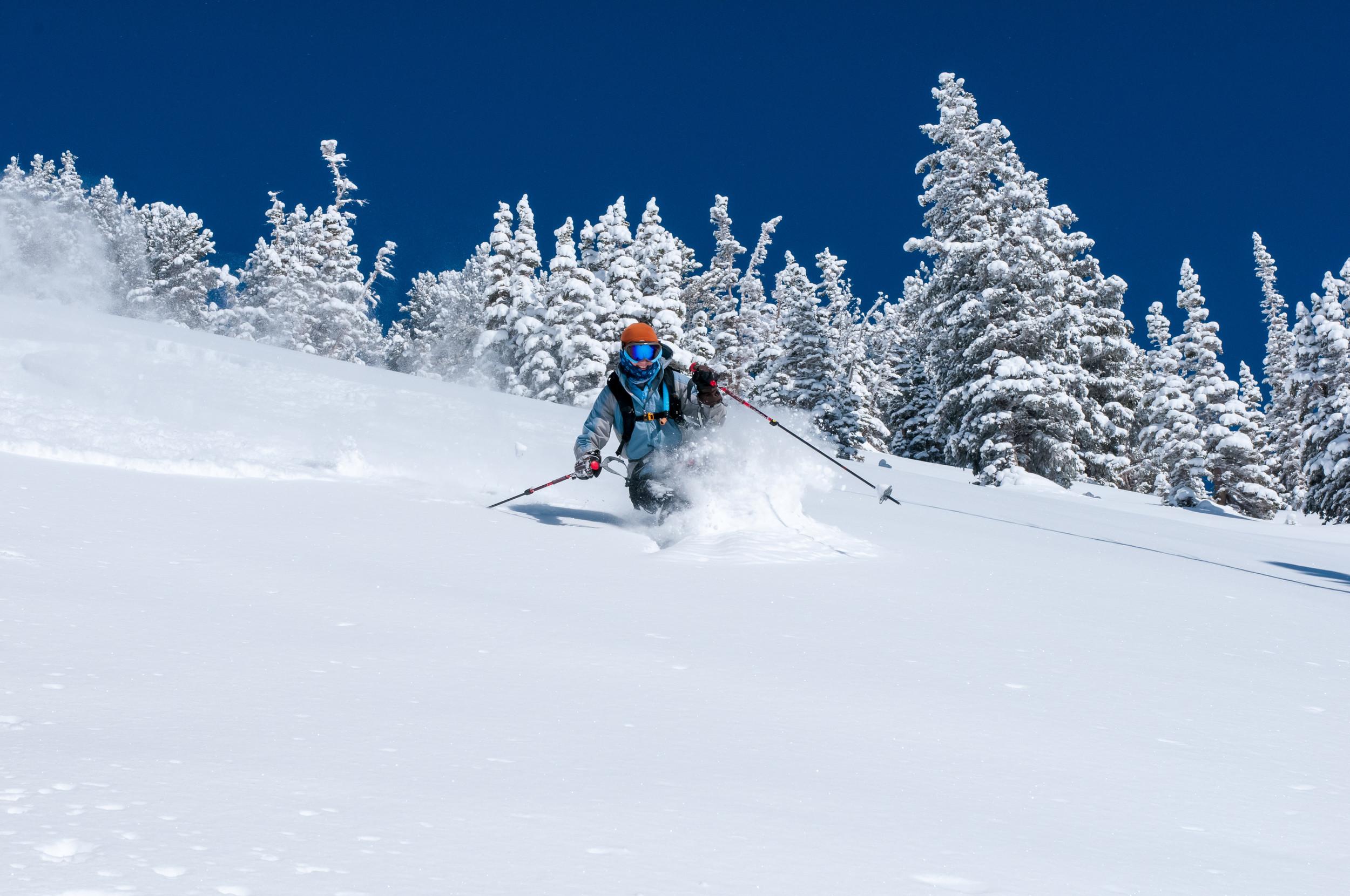 Powder skiing in Canada on your BC ski safari.
