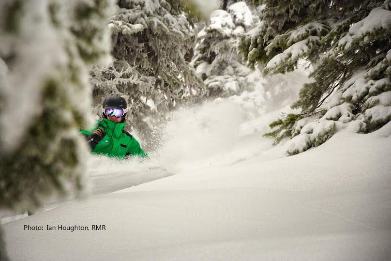 Canadian tree skiing on a BC ski safari