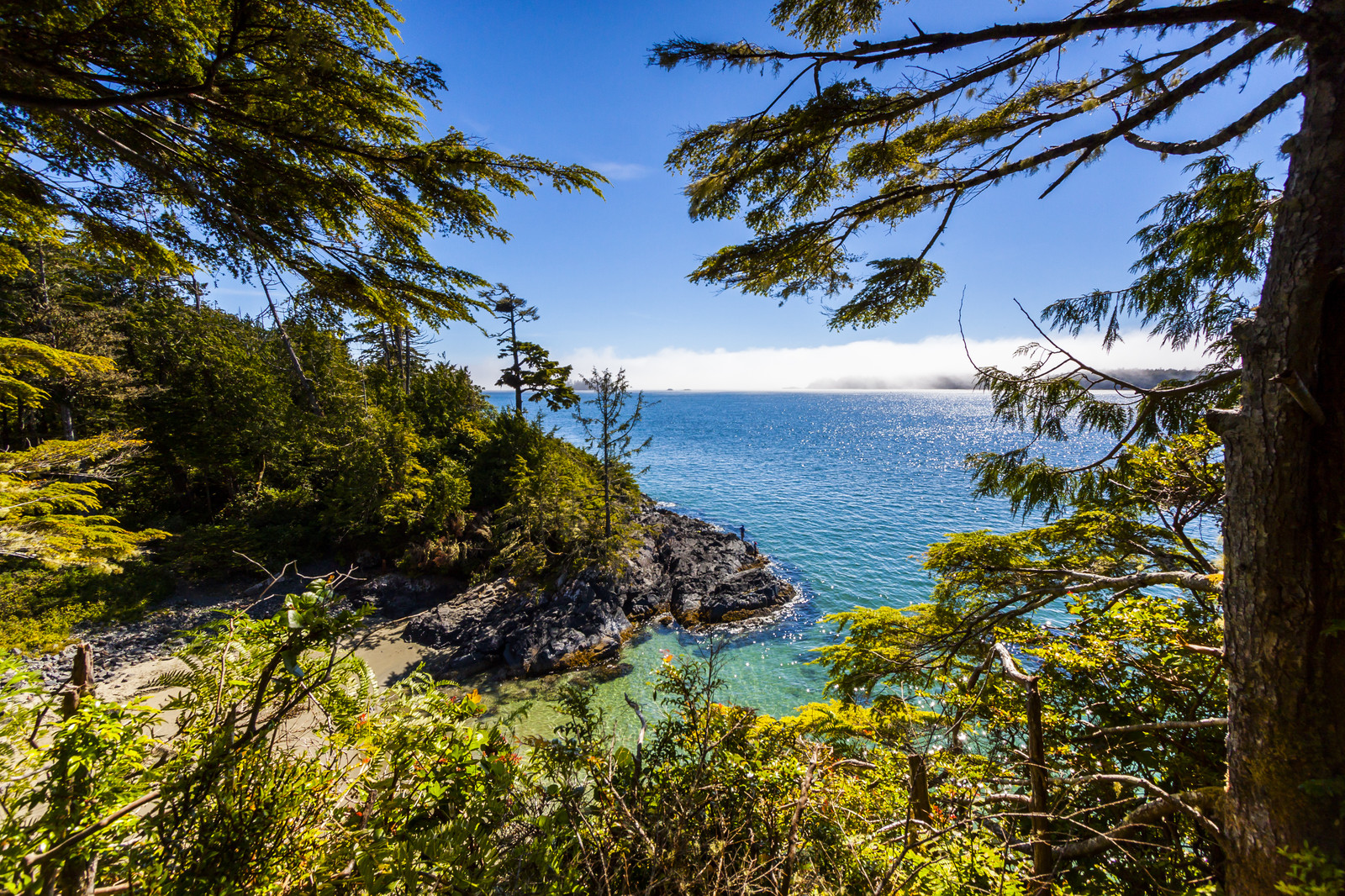 BC adventure tours on Vancouver Island.