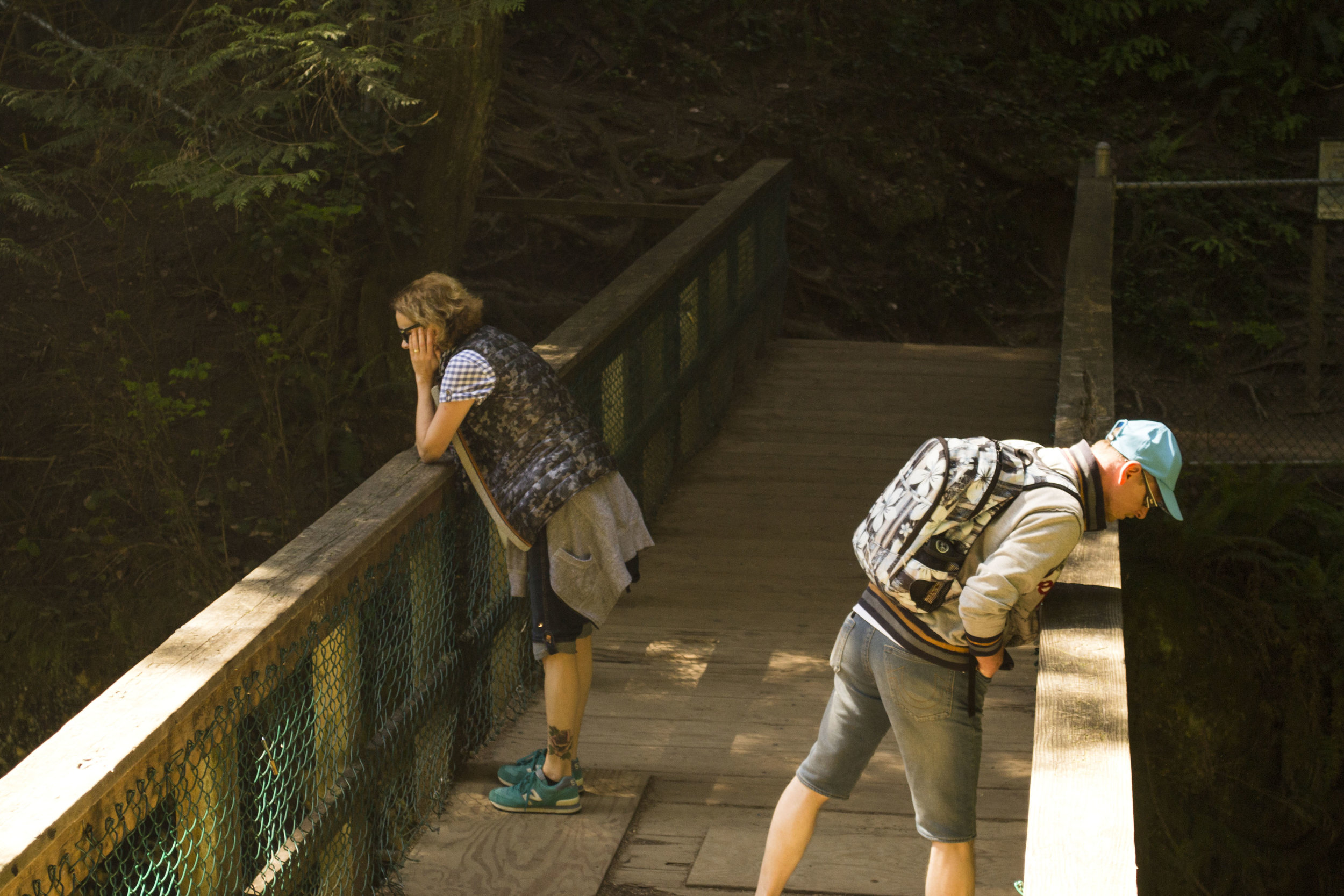 Guided Vancouver bike tour in Lynn Canyon