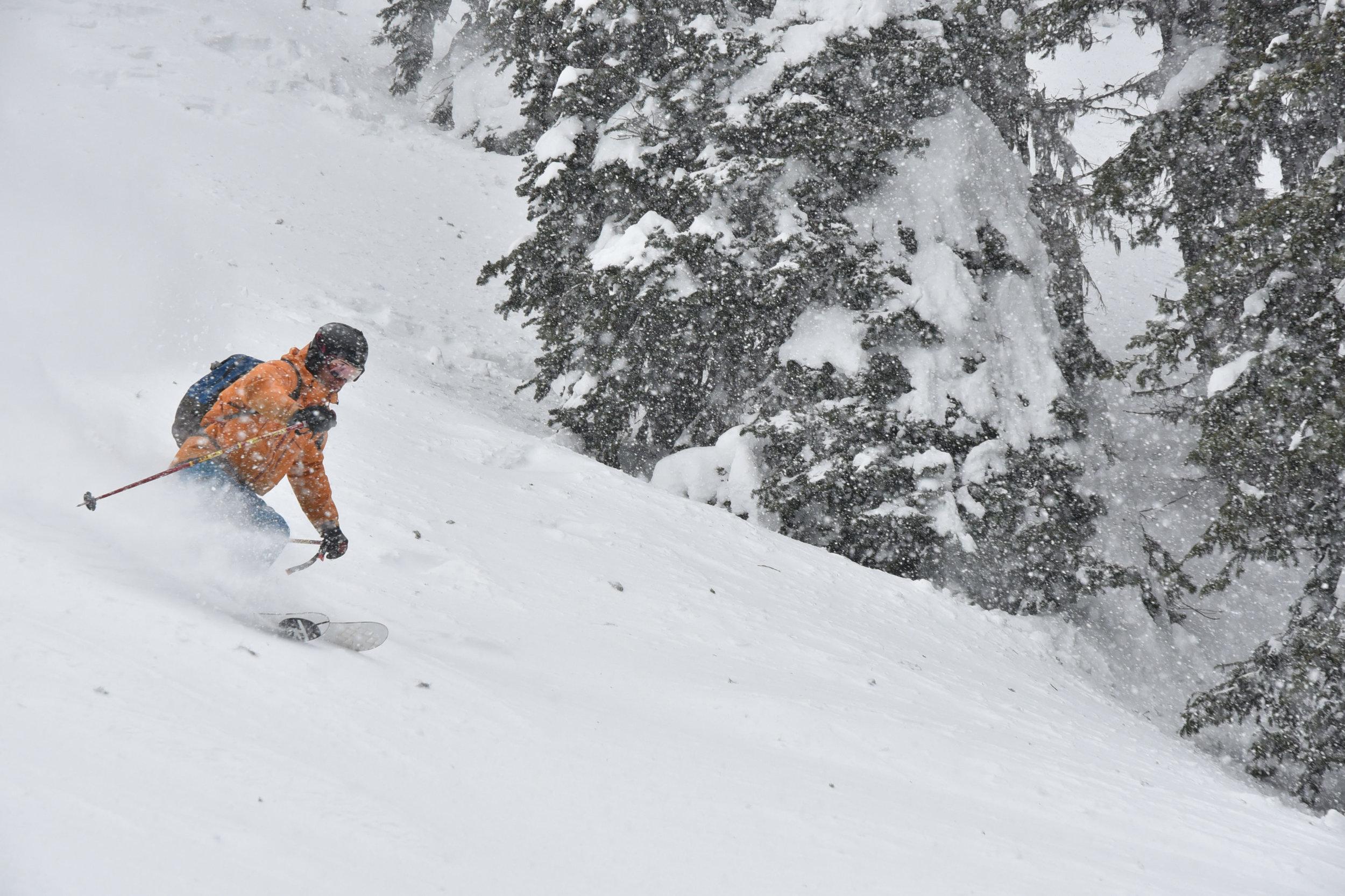 Copy of Alex Ross ski guide in Canada.