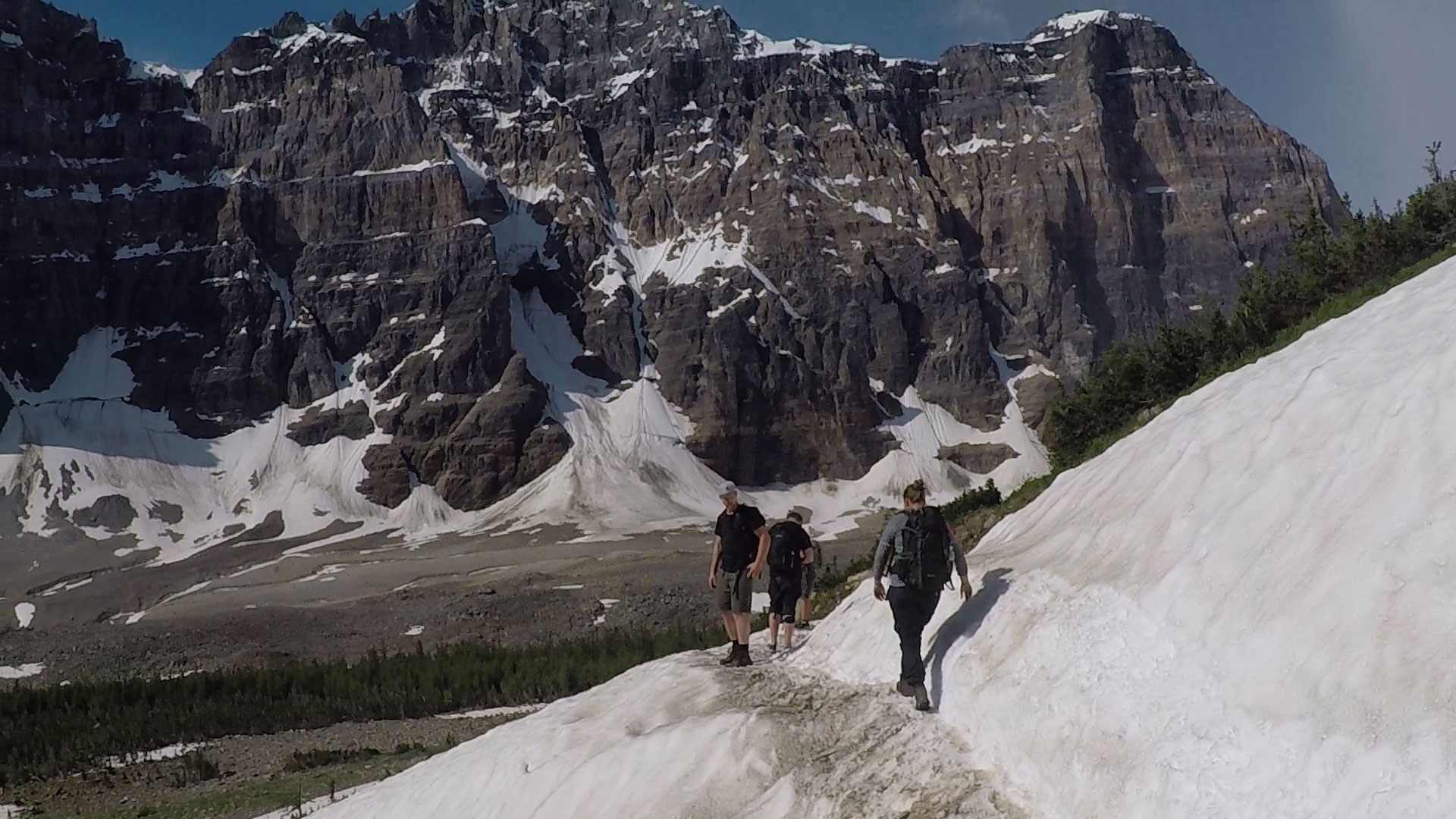 Hiking with local guides near Banff.