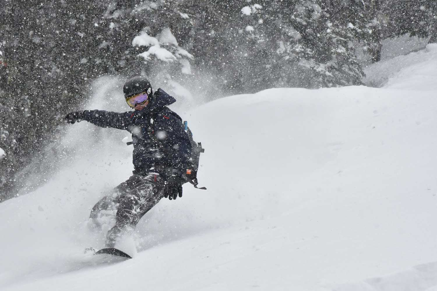 Powder turns during a Canada ski/ snowboard tour