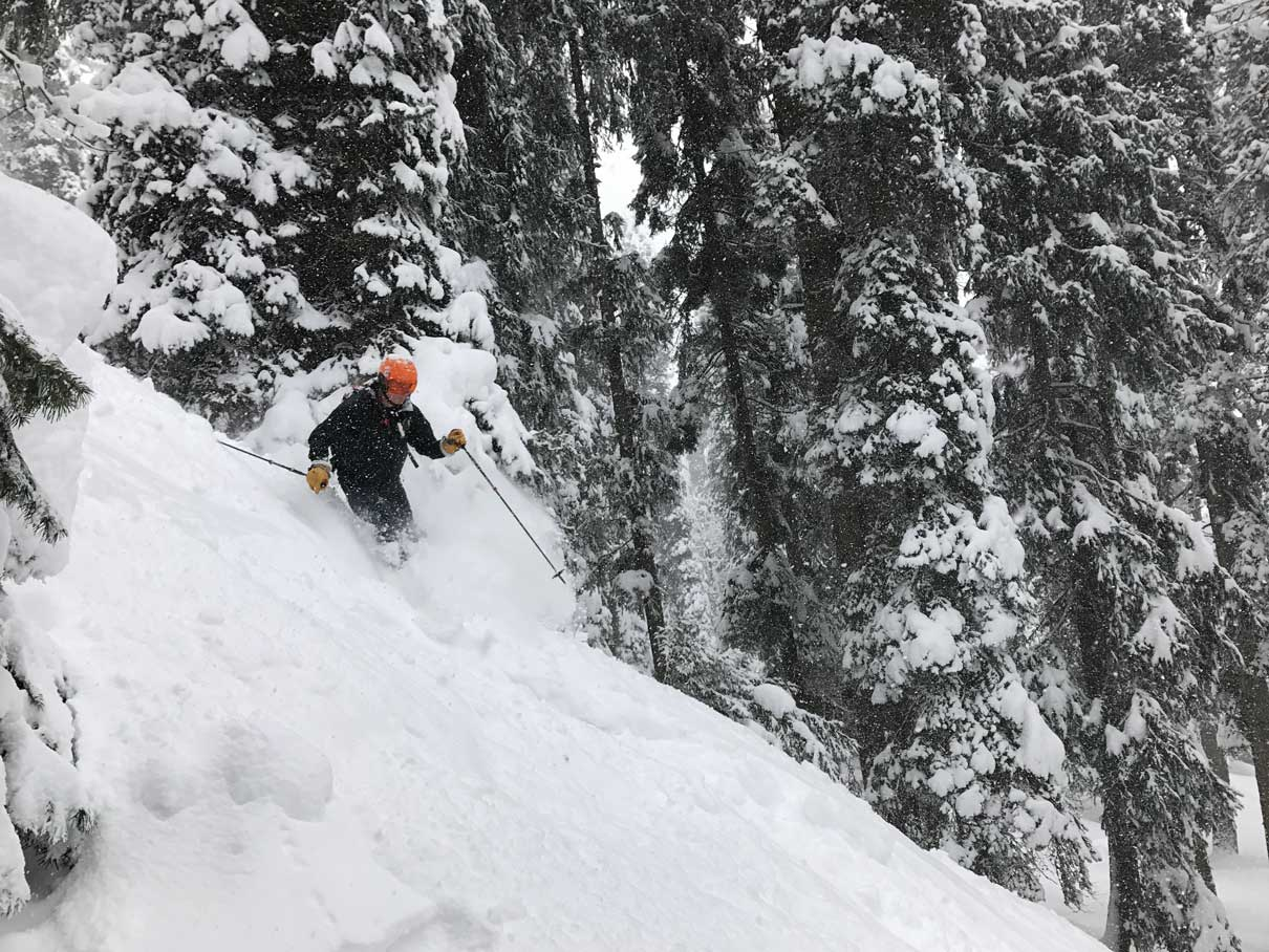skier-pow-1-opti-lar.jpg