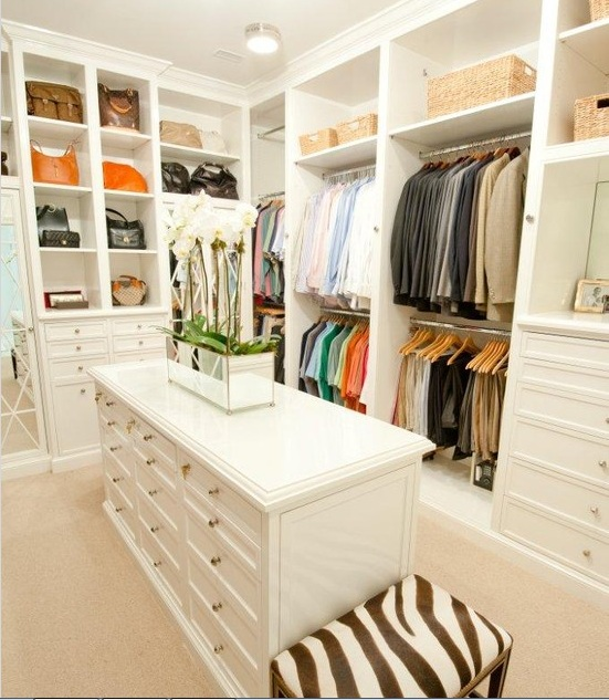 walk-in-closet-idea-organiser.jpg
