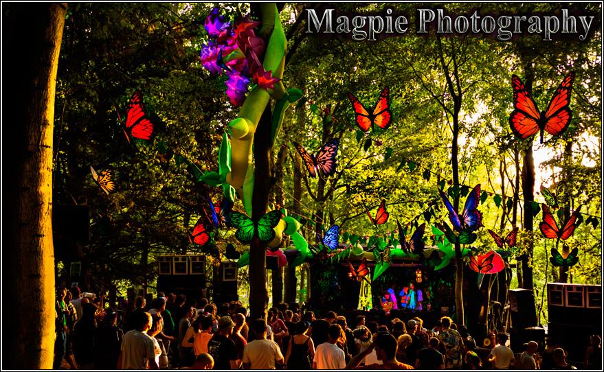 Magpie-photography.-Boomtown-fair-2013-(12).jpg