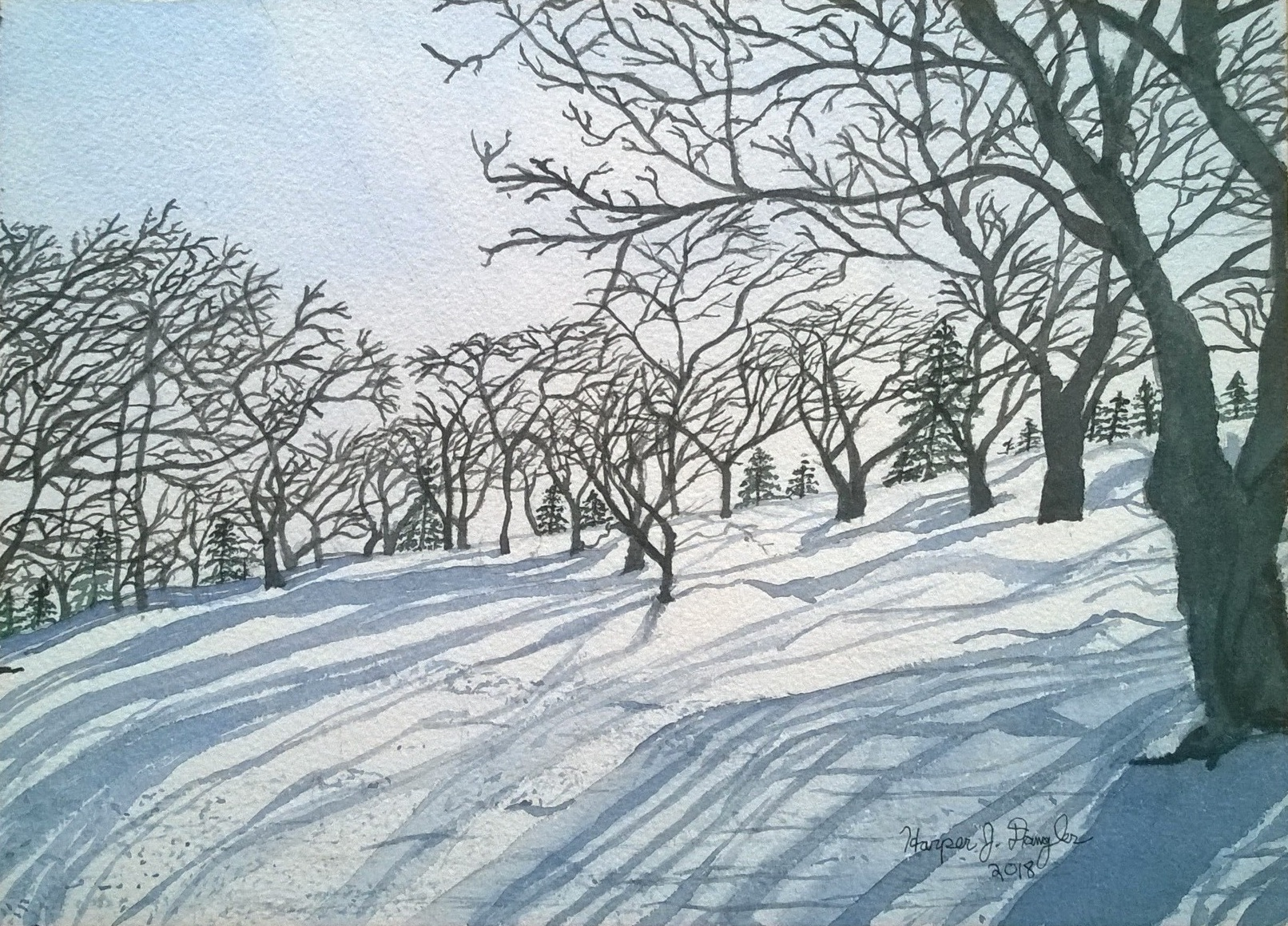 Winter's Long Shadows on Peter's Hill