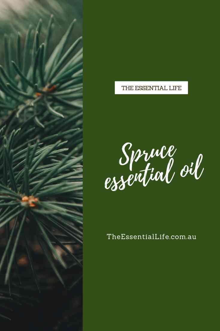 Spruce essential oil.jpg