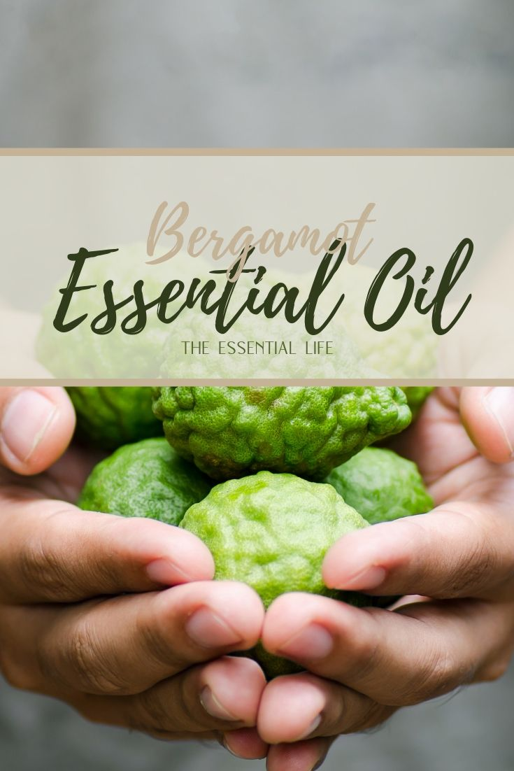 Bergamot Essential Oil_ The Essential Life.jpg