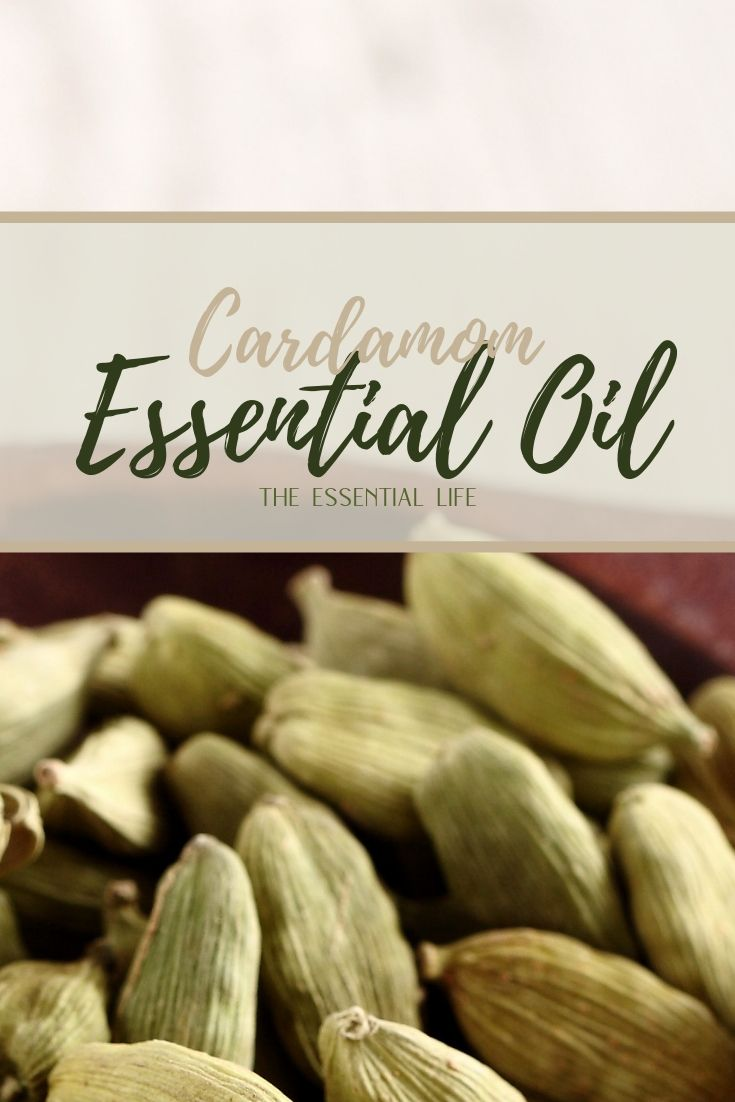 Cardamom Essential Oil_ The Essential Life.jpg