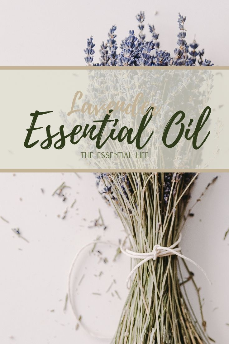 Lavender Essential Oil_ The Essential Life.jpg