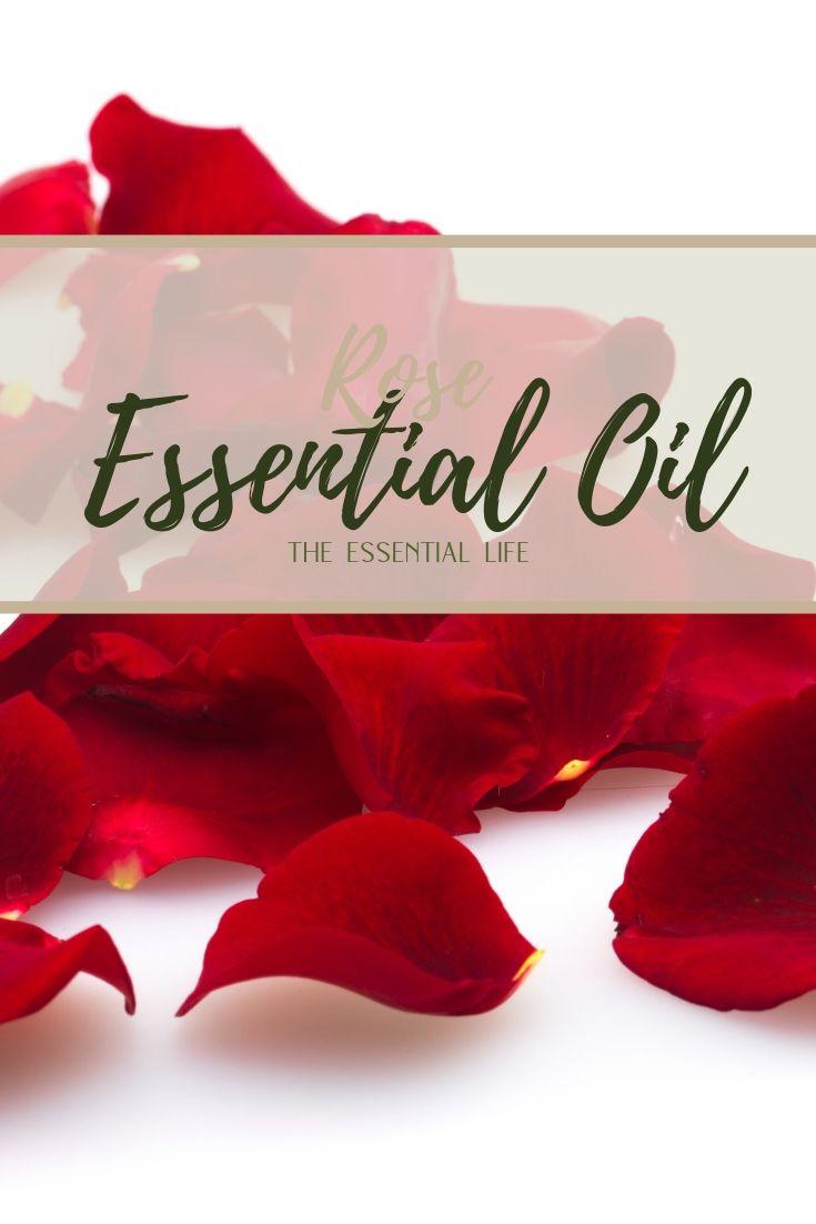 Rose Essential Oil_ The Essential Life.jpg