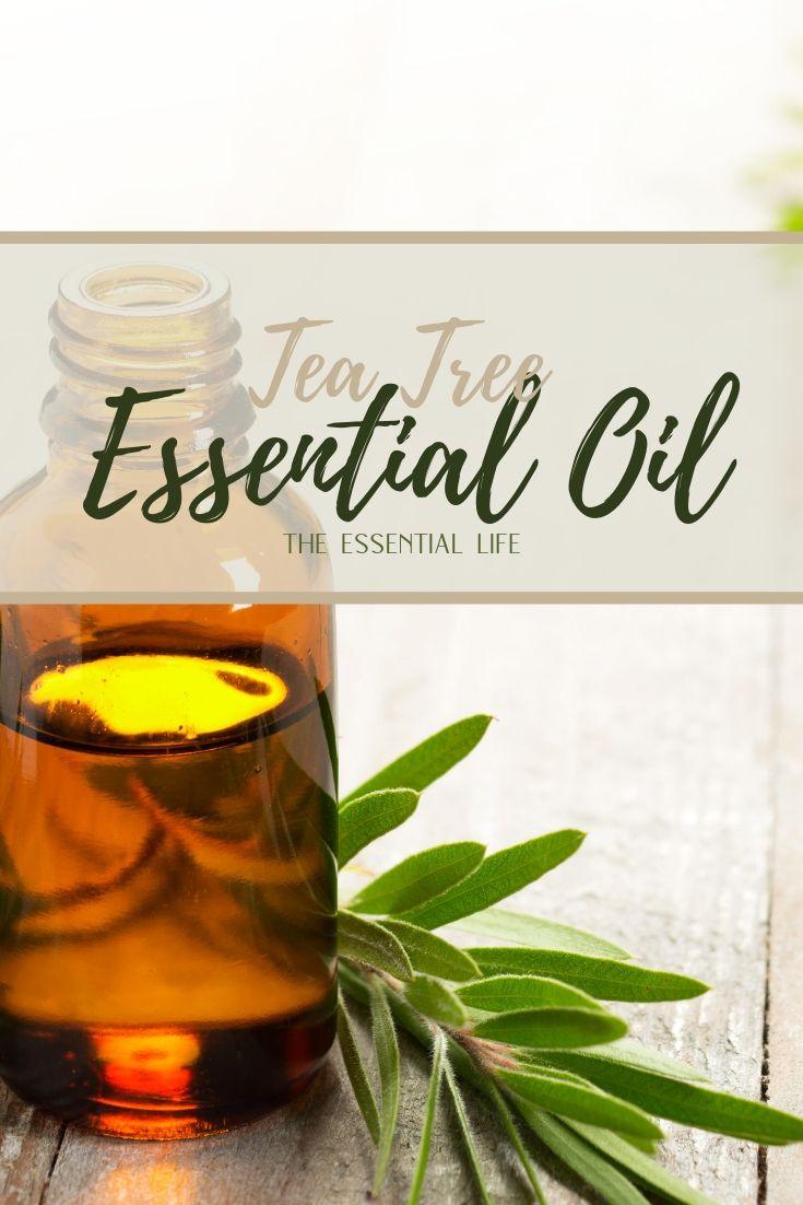Tea Tree Essential Oil_ The Essential Life.jpg