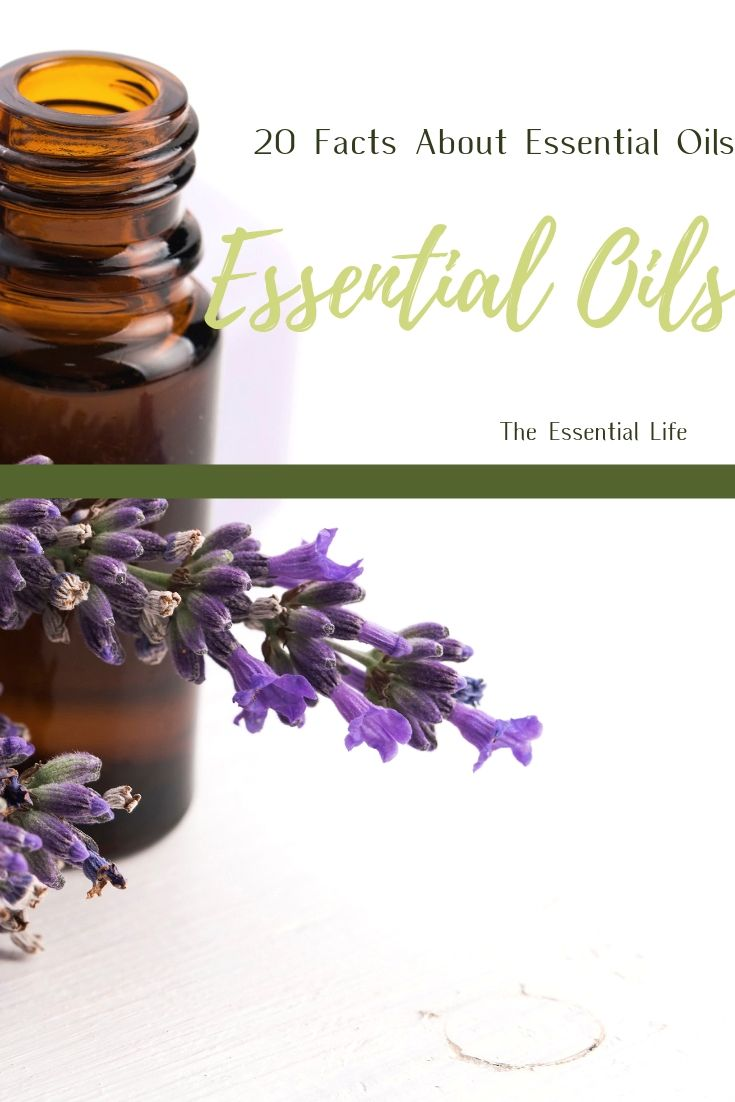 20 Facts About Essential Oils_ The Essential Life.jpg