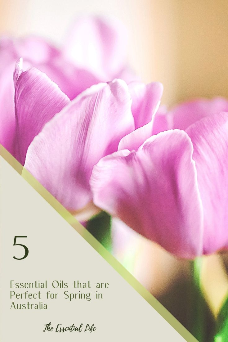 5 Essential Oils that are Perfect for Spring in Australia_ The Essential Life.jpg