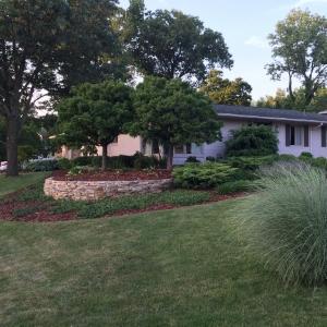 The garden of Robert Beitzel