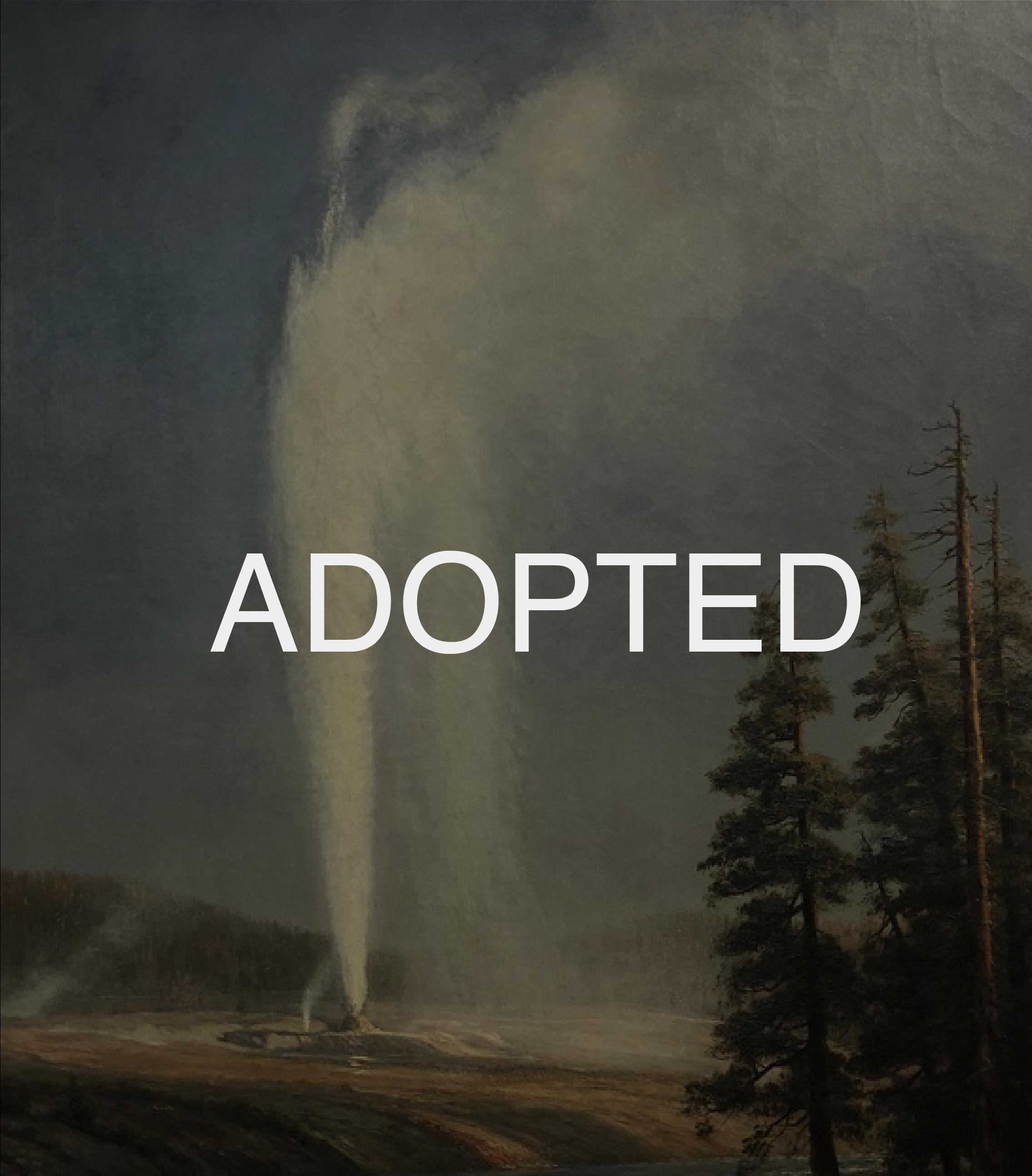 Adopted Bierdstadt-02.png