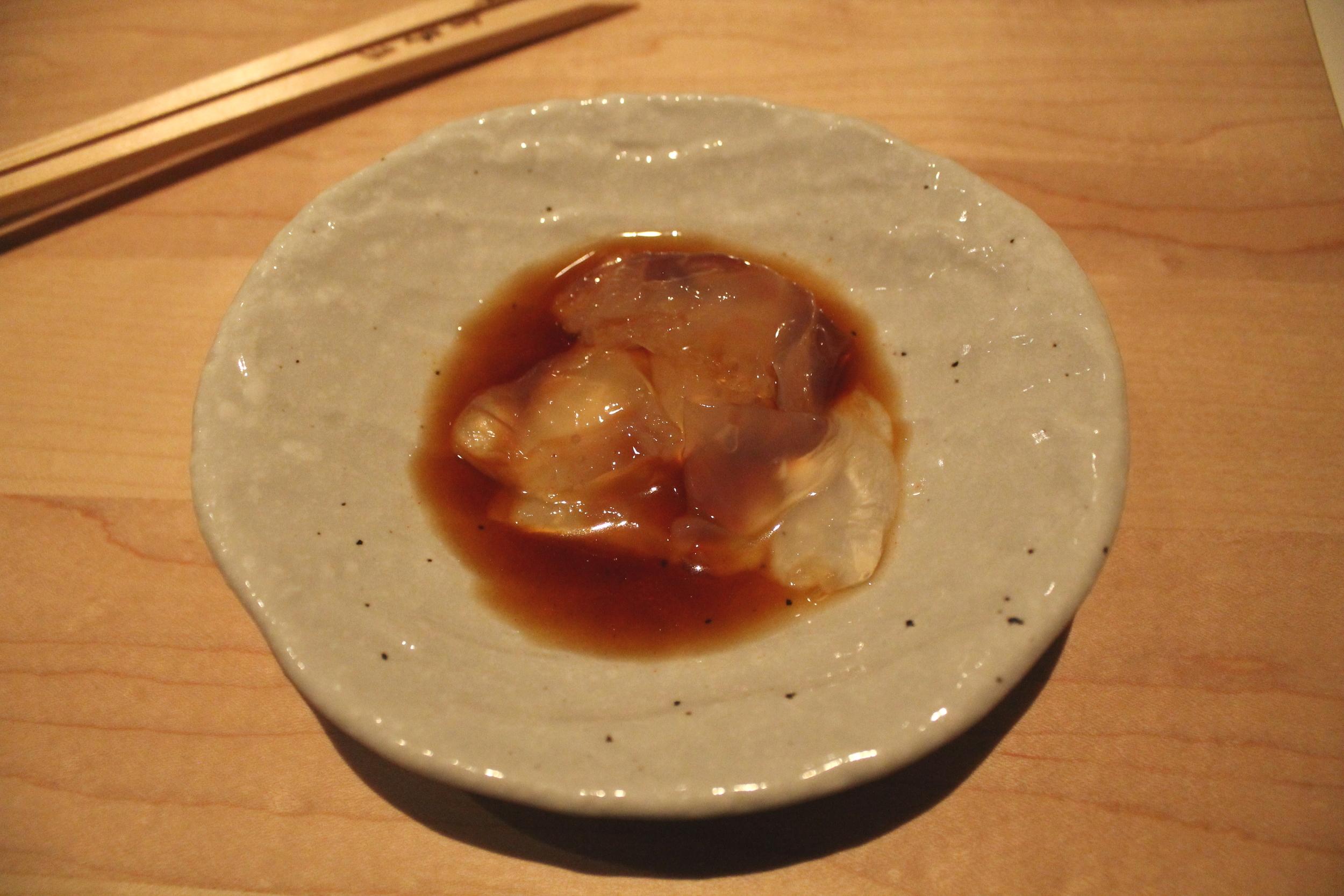 Japanese Live Jellyfish