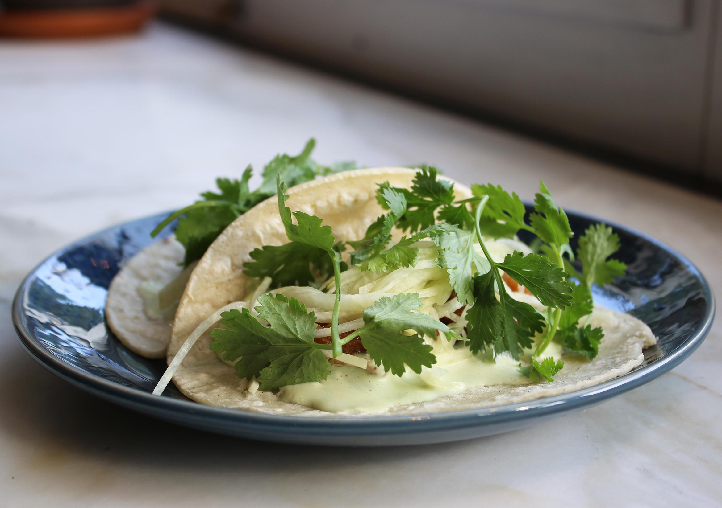 Fried Oyster Taco:  Jicama Slaw, Cilantro Yoghurt, Corn Tortilla or Lettuce Wrap