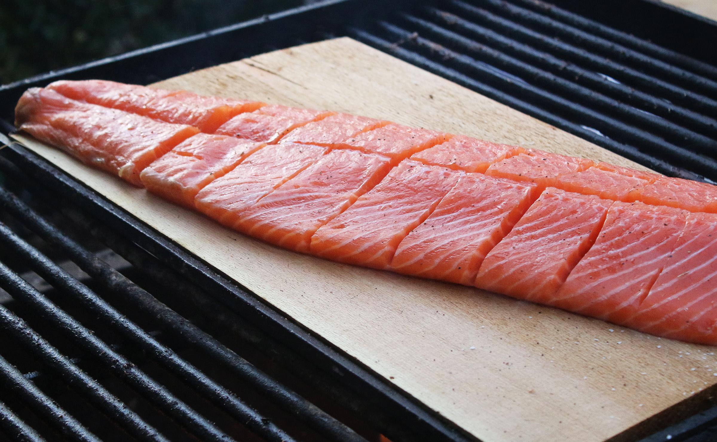 _Salmon.jpg
