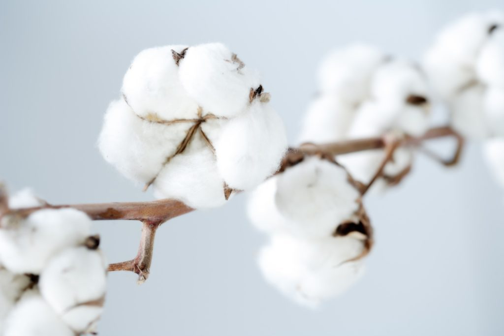 Organic Crib Mattress | The Good Trade