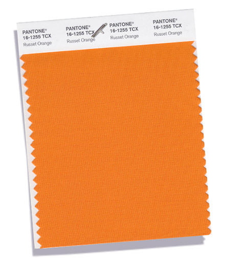 Unpacking Pantone's Fall Color Picks - Russet Orange