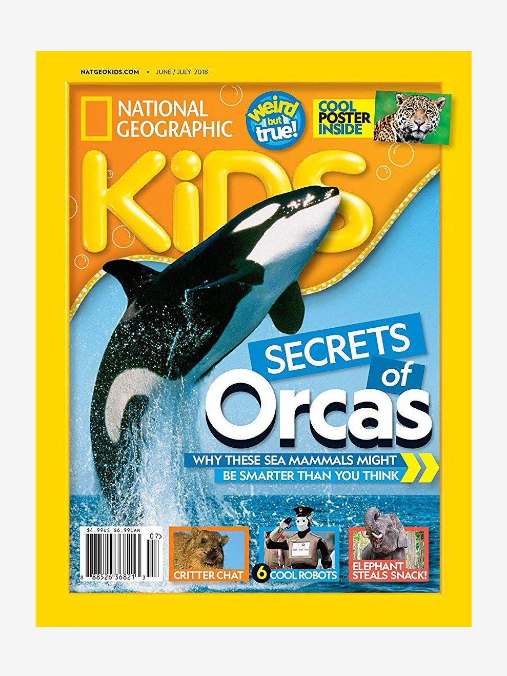 Annual Subscription to National Geographic Kids - Plastic Free Gifts For Kids on The Good Trade