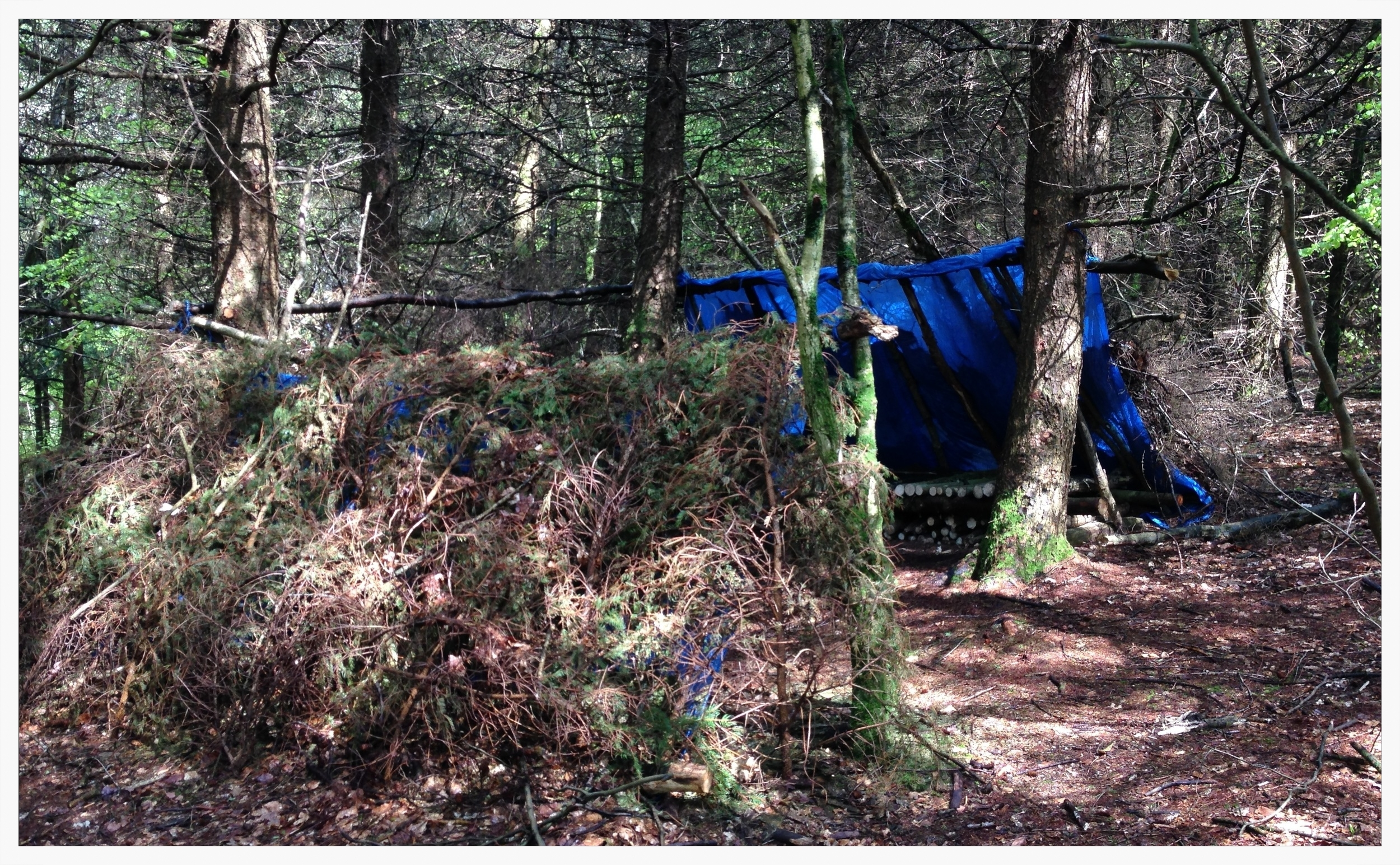 Someone had left this proper Ray Mears style camp behind!