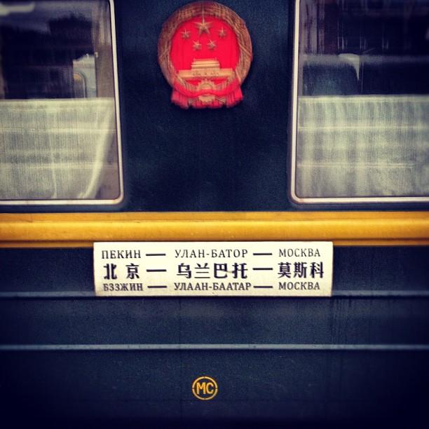 mchin_mongolia_01.jpg