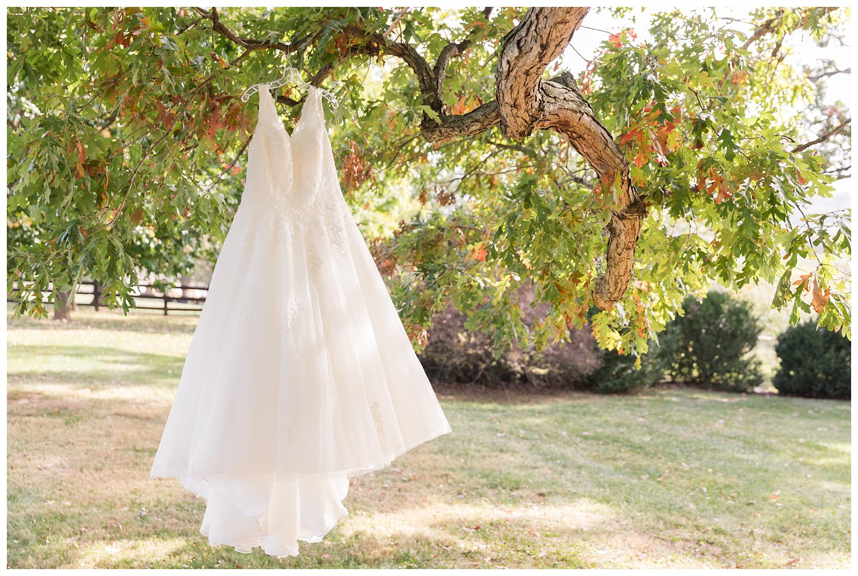 elovephotos gaie lea staunton virginia fall wedding photography_1095.jpg